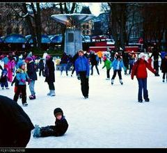 Spikersuppa Ice Rink用戶圖片