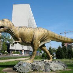 Senckenberg Natural History Museum User Photo