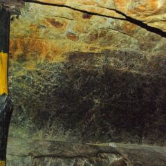 Gold Acres User Photo