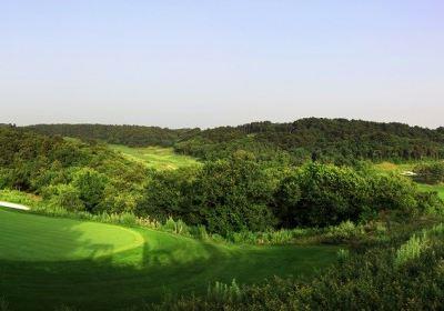 鐵嶺龍山國際高爾夫俱樂部