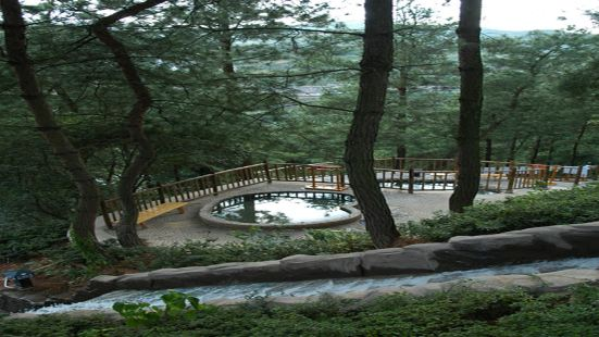 Tianyi Forest Hot Spring