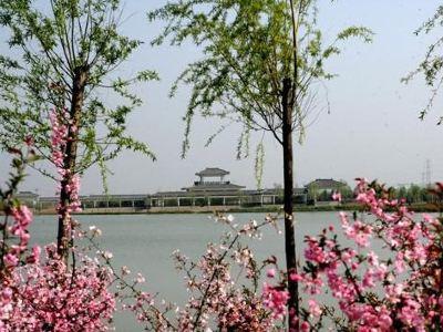沙溝湖農業示範園
