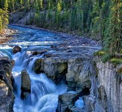 Sunwapta Falls User Photo