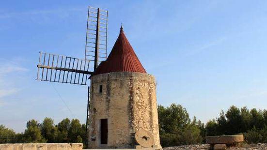 都德的風車