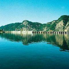 lao hu shao dian zhan User Photo