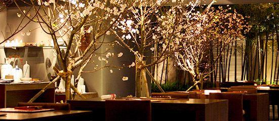 Shintori Cuisine Japonaise