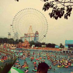 魅力贛江沙灘主題樂園用戶圖片