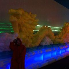빙설세계 여행 사진