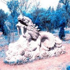 錐子山森林公園用戶圖片