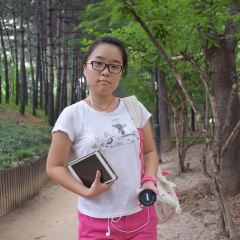반포대교남단 한강시민공원입구 여행 사진