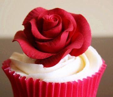 鑫欣紅玫瑰蛋糕