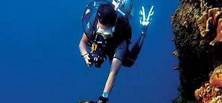 위주도 다이빙