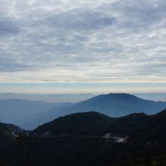 남산목장 여행 사진
