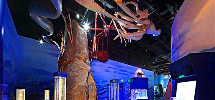 닝보 과학탐험센터1