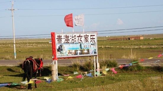 青海湖鳥島餐飲街