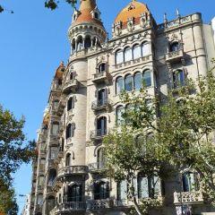 Plaça de Catalunya User Photo