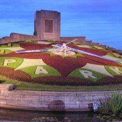 Floral Clock User Photo