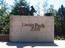 林肯公园动物园-芝加哥-Oo陛下oO