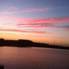 東郊湖風景區用戶圖片