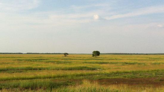 杜蒙草原風情