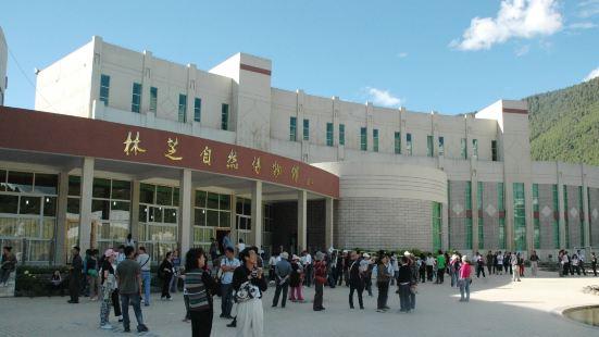 林芝自然博物館