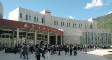 林芝自然博物馆-林芝-大叔任然