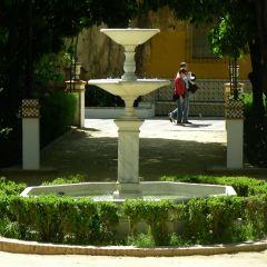 Jardines de Murillo User Photo