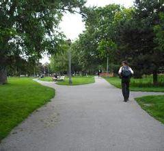 Trinity Bellwoods Park User Photo