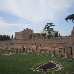 Palatine Hill User Photo