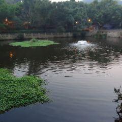 海印池用戶圖片