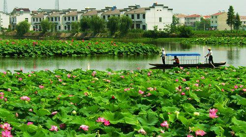 Taoxin Shuiyun