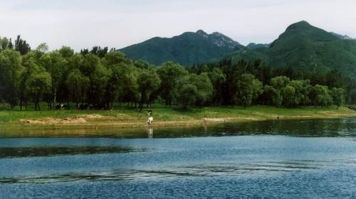 Bird Island at Hongluo Lake