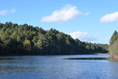 磨盤山國家森林公園