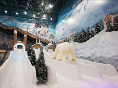 Onemount Snow Park