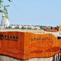 칭다오 수족관 여행 사진