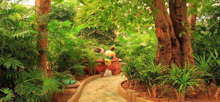 Longda Hot Spring Resort & Spa1