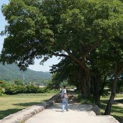 낙안읍성민속촌 여행 사진