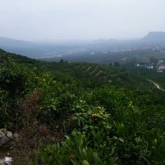 Juyuan Sceneic Area User Photo
