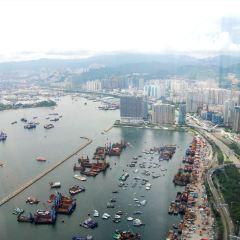香港天際100觀景台用戶圖片