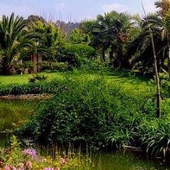 海南風情園用戶圖片