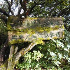Leigong Mountain User Photo