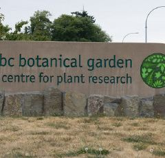 UBC Botanical Garden User Photo