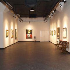 Cairns Art Gallery User Photo
