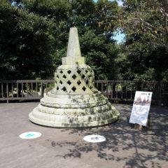 제주김녕미로공원 여행 사진
