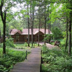五營國家森林公園用戶圖片