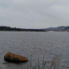 三十六腳湖用戶圖片