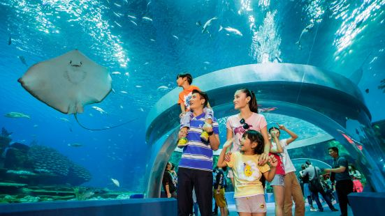 Zhuhai Hengqin Chimelong International Ocean Tourist Resort