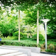 Weifang People's Park User Photo