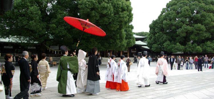 Meiji Jingu1