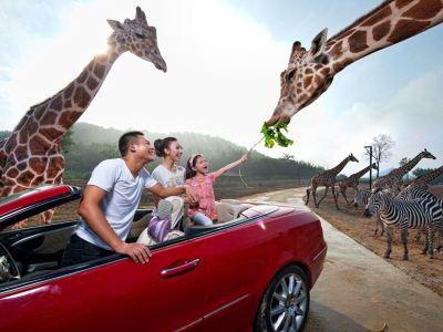 Hangzhou Safari Park